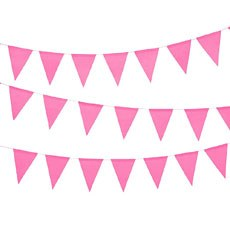 Paper Pennant Banner - Hot Pink