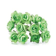 Green Tea Roses - 24 Pack