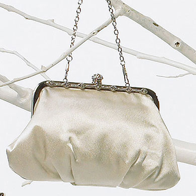 Framed Soft Bridal Accessory Evening Bag